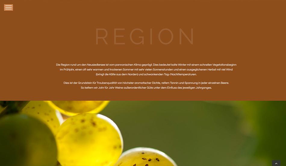 Andreas Unger Website Region