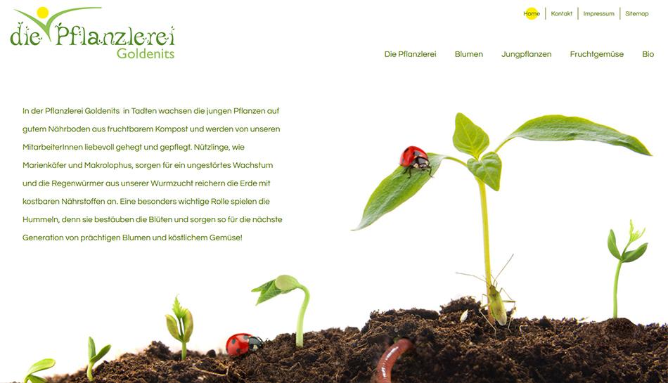 Die Pflanzlerei Website Startseite