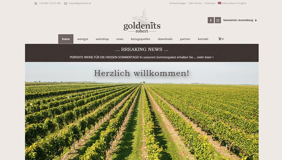 Goldenits Robert Website Screen 1