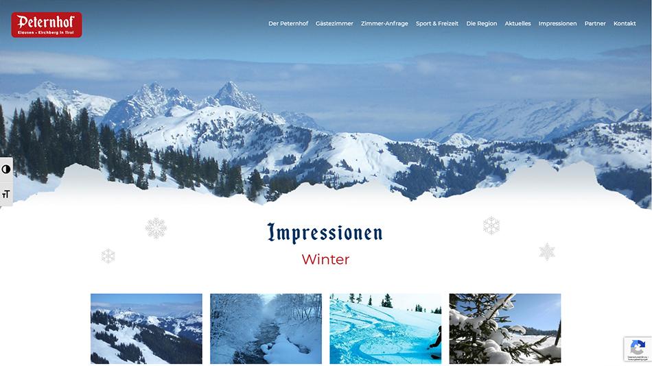 Peternhof Website Screen 2