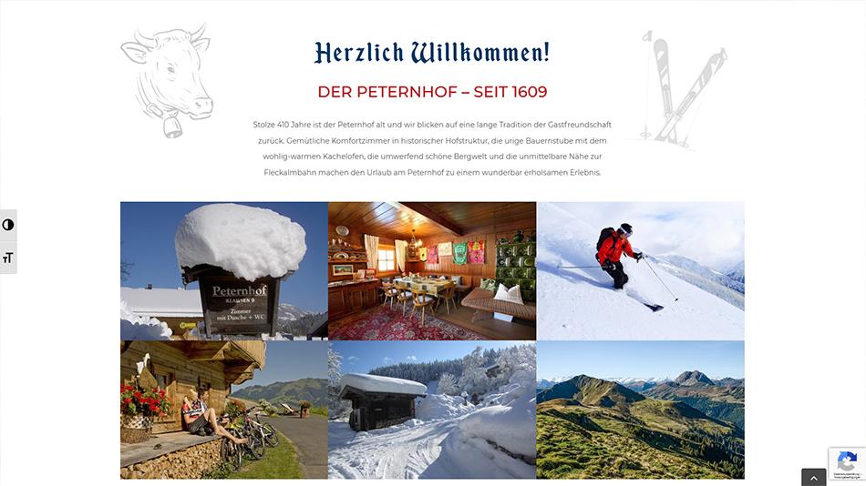 Peternhof Website Screen 3