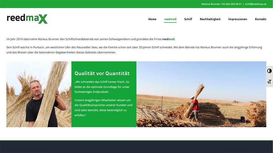 reedmaX Website Screen 2