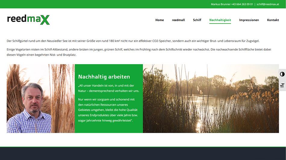 reedmaX Website Screen 1