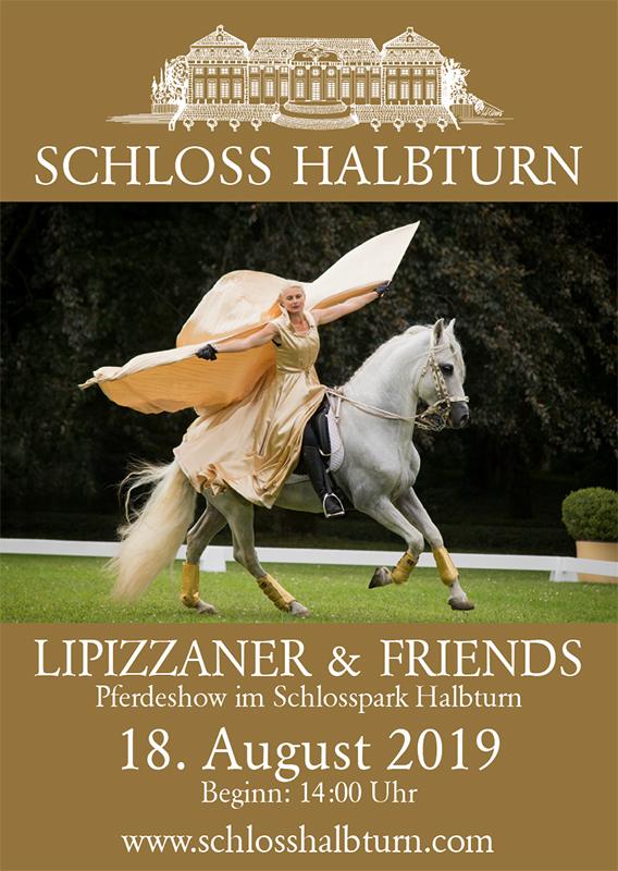 Schloss Halbturn Plakat Lipizzaner