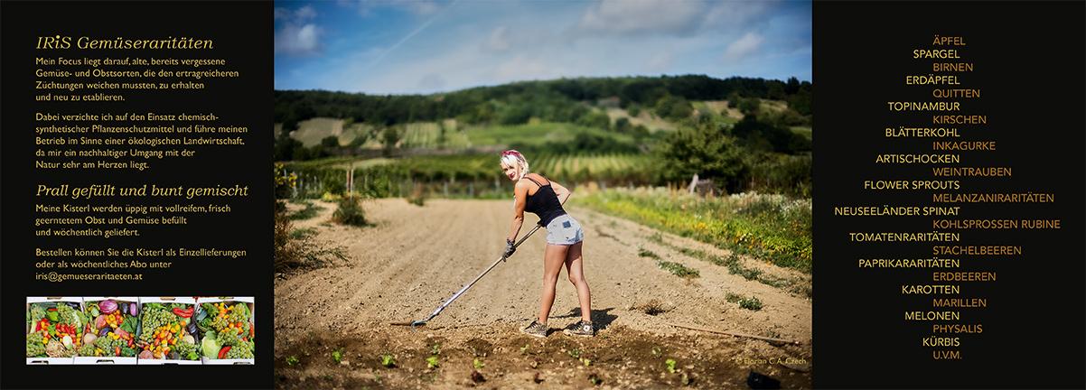 IRiS Gemüseraritäten Folder innen
